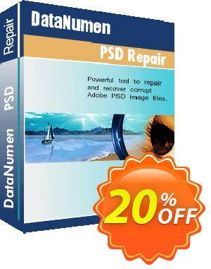 DataNumen PSD Repair Coupon, discount Education Coupon. Promotion: Coupon for educational and non-profit organizations