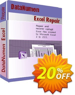 DataNumen Excel Repair割引コード・Education Coupon キャンペーン:Coupon for educational and non-profit organizations