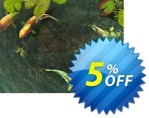 3PlaneSoft Koi Fish 3D Screensaver discount coupon 3PlaneSoft Koi Fish 3D Screensaver Coupon - 3PlaneSoft Koi Fish 3D Screensaver offer discount