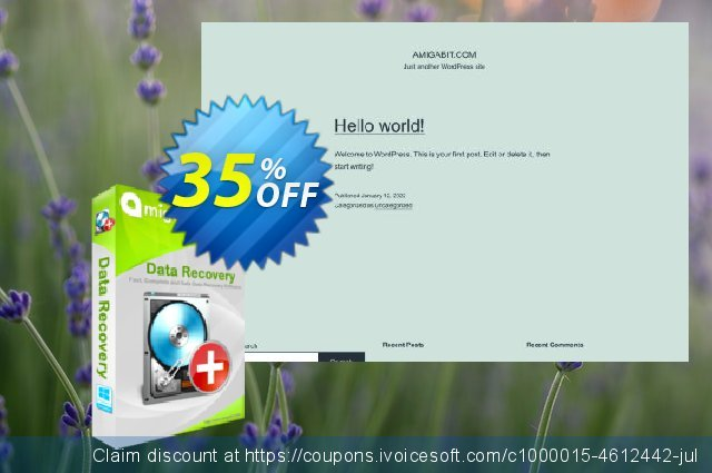 Amigabit Data Recovery Pro discount 35% OFF, 2021 New Year offering sales