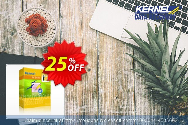 Kernel for Draw - Technician License discount 25% OFF, 2021 New Year's Day discount