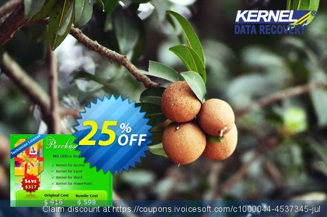 Kernel MS Office File Recovery (Technician License) discount 25% OFF, 2020 Halloween offering sales