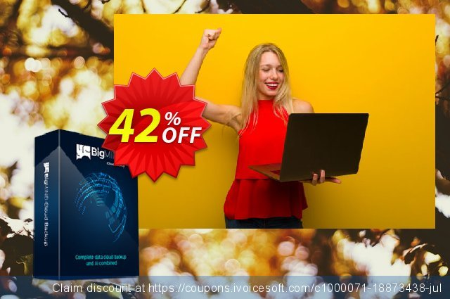 BigMIND Business Standard (Yearly) discount 42% OFF, 2020 Back to School season offering sales