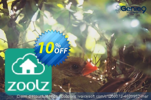 Zoolz Cloud 500 GB - 1 Year - Home edition 最佳的 折扣码 软件截图