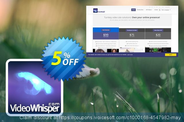 VideoWhisper Level1 License Monthly Rental + StreamStartup Hosting discount 5% OFF, 2019 Black Friday offering sales
