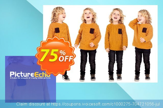 PictureEcho Business (2 years) discount 30% OFF, 2021 Women Day discounts