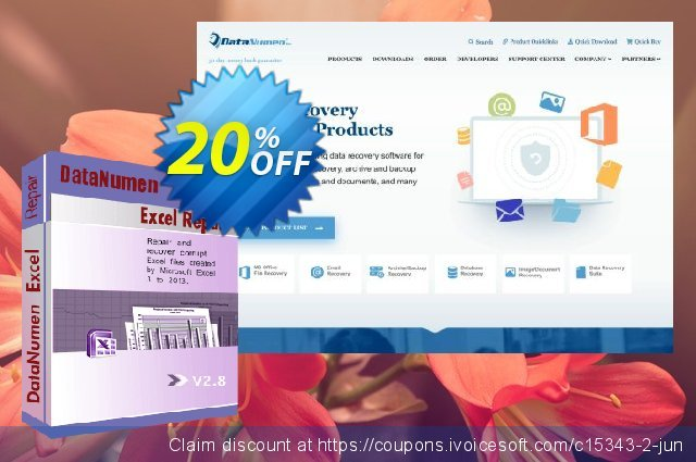 DataNumen Excel Repair discount 20% OFF, 2019 University Student deals offering sales