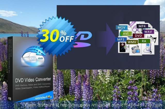 WonderFox DVD Video Converter - 1 Year License激动的产品销售 软件截图