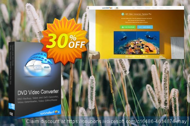 WonderFox DVD Video Converter (special) discount 30% OFF, 2020 New Year offering deals