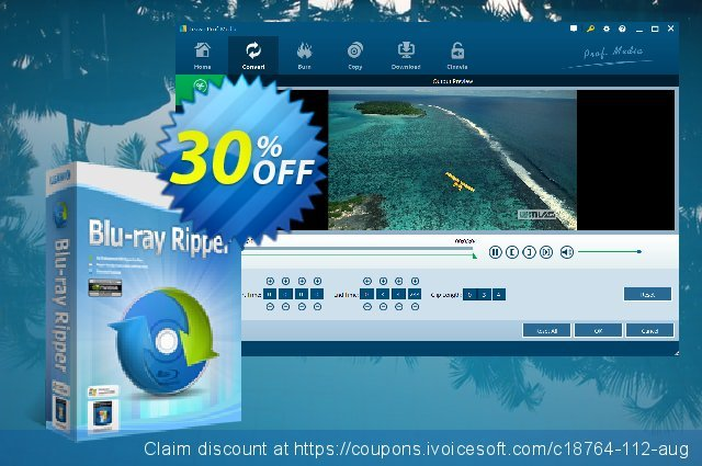 Leawo Blu-ray Ripper Lifetime discount 30% OFF, 2021 Rose Day offering sales