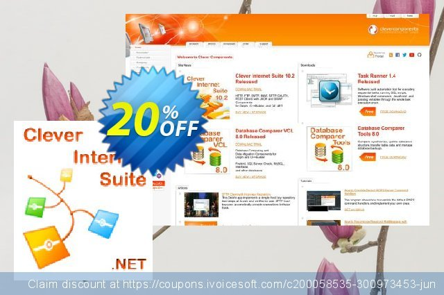 Clever Internet .NET Suite discount 20% OFF, 2021 New Year's Weekend promo