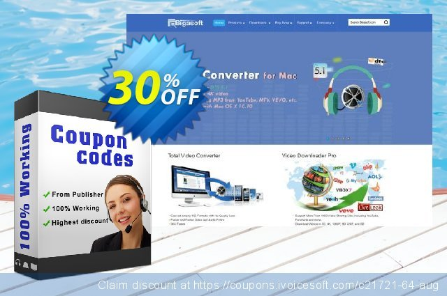 Bigasoft WTV Converter discount 30% OFF, 2019 New Year's eve promotions