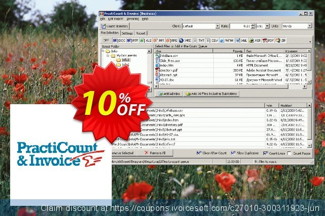 PractiCount and Invoice (Enterprise Edition) discount 10% OFF, 2021 Happy New Year deals