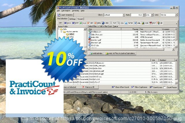 PractiCount and Invoice Enterprise Server License discount 10% OFF, 2021 January promo
