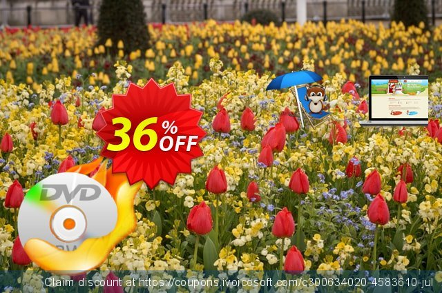 imElfin DVD Creator discount 36% OFF, 2021 New Year's Weekend promotions