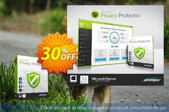 Ashampoo Privacy Protector discount 30% OFF, 2019 Back to School Promos offering sales