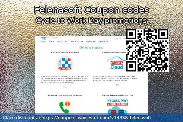 Felenasoft Coupon code for 2019 New Year